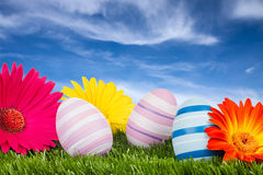 Easter meadow stock photography