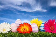 Easter meadow royalty free stock photos