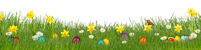 Easter meadow with colorful easter eggs stock photos
