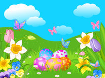 Easter Meadow Stock Photos