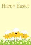 Easter śmieszna karta Zdjęcia Stock