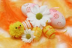 Easter motive. Little chick,white flover,easter eggs on yellow and orange feathers Royalty Free Stock Images