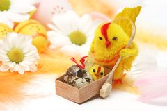 Easter motive. Hen and her chick on easter background Stock Photography
