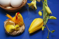 Easter motive. Hen and her chicks on easter background Stock Photo