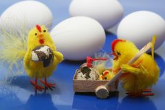 Easter motive. Hen and her chick with cock,white eggs on blue background Stock Photos