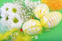 Easter motive. Photo of Easter eggs and flowers on green background Royalty Free Stock Photo