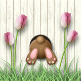 Easter motive, bunny bottom, pink tulips and fresh grass on white wooden background, illustration vector illustration