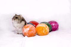 Easter mouse Stock Photo