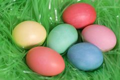 Easter Multi Colored Eggs Stock Photography
