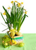 Easter narcissuses with an easter rabbit Royalty Free Stock Image