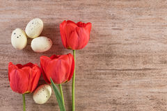 Easter natural background with red tulip decorated with Easter Eggs on light brown. Text space, top view Royalty Free Stock Photos