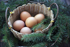Easter natural colour eggs in the lug on rustic Stock Images