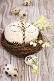 Easter natural decorations - eggs and wild flowers on wood. Easter natural decorations - bird's nest, eggs and lily of the valley on wooden table Stock Image