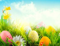 Easter nature spring scene background. Beautiful colorful eggs in spring grass meadow. Over blue sky royalty free stock photos