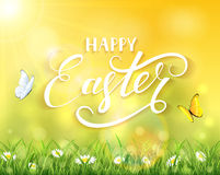 Easter nature and sun over grass. Nature Easter background with a two butterflies flying above the grass and flowers, sun beams and lettering Happy Easter Stock Photography