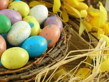 Easter Nest. Bird's nest with colorful candy eggs Stock Photography