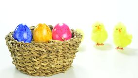 Easter nest. With painted eggs and hopping chicks