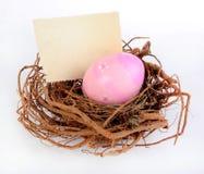 Free Easter Nest Stock Photos - 49364453