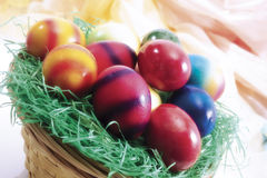 Easter nest with colored eggs Stock Photography