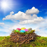 Easter nest with colored eggs over green grass Royalty Free Stock Images