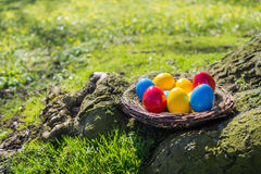 Easter nest. Colorful easter eggs in easter basket on lawn Stock Photos