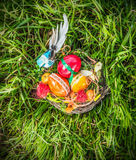 Easter nest with decorating eggs and blue bird in spring grass Stock Images