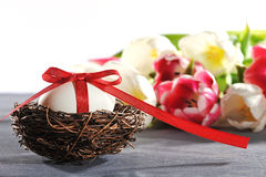 Easter nest  with easter egg Royalty Free Stock Photography