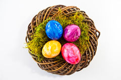 Easter nest with easter eggs Stock Photos