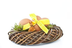 Easter nest with easter eggs Royalty Free Stock Photo