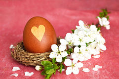 Easter nest with egg and spring flowers Royalty Free Stock Photo