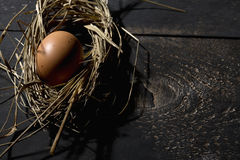 Easter nest, egg in straw Royalty Free Stock Images