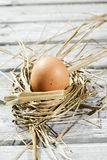 Easter nest, egg in straw Royalty Free Stock Image