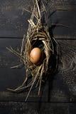Easter nest, egg in straw Stock Photography