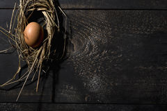Easter nest, egg in straw Royalty Free Stock Photos