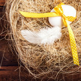 Easter nest with Egg, yellow ribbon and white feather on wooden Royalty Free Stock Images