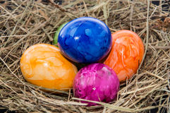 Easter Nest with Eggs Stock Photo
