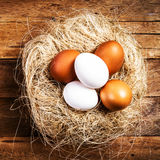 Easter nest with Eggs  on wooden background with copyspace. Whit Stock Images