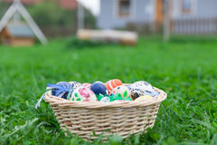 Easter nest. An esaster nest with some colorful eggs in the green grass Royalty Free Stock Photos