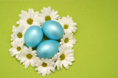 Easter Nest with flowers Stock Photo