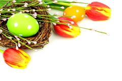 Easter nest and flowers Royalty Free Stock Image