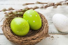 Easter nest with green easter eggs Royalty Free Stock Photo
