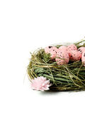 Easter Nest II Royalty Free Stock Photo