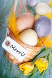 Easter Nest with Merci Stock Photo