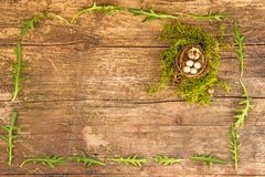Easter nest with painted eggs. On a plank Stock Photography