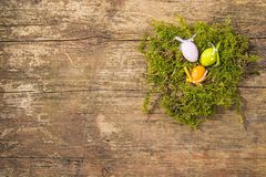 Easter nest with painted eggs. On a wooden plank with text space Stock Image