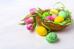 Easter nest with painted eggs and tulips, copy space royalty free stock photo