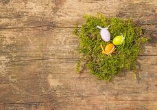 Easter nest with painted eggs Royalty Free Stock Image