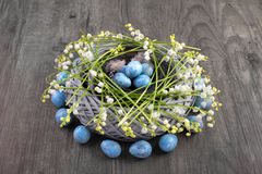 Easter nest with quail eggs on wood decorated with lily of the v Royalty Free Stock Photos