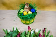 Easter nest with tulips in the foreground. Greetings Royalty Free Stock Photography