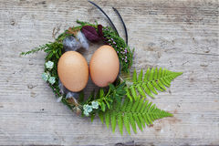 Easter nest with two eggs and feathers Stock Photography